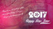 happy-new-year-2017-poems-hd-wallpapers